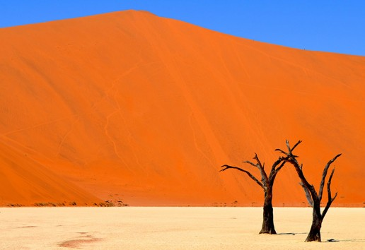 7-Day Namibia Fly-In Luxury Safari