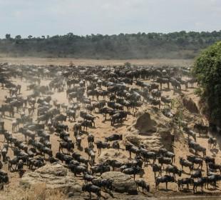 7-Day Serengeti Migration Safari