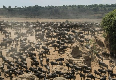 7-Day Serengeti Migration Safari