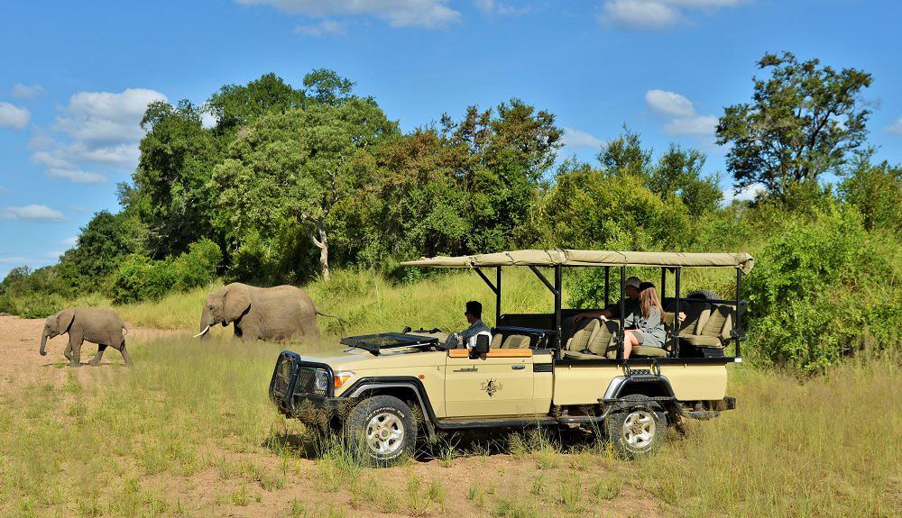 Imbali Safari Lodge Safari 4