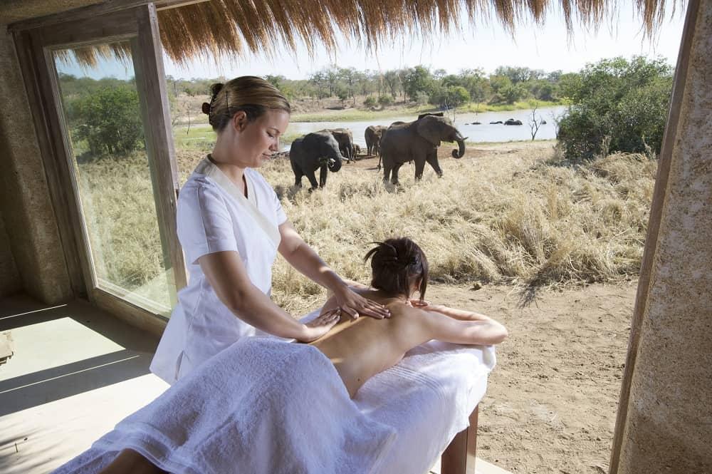 Treatment With Elephants
