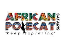 Africa Polecat Safaris