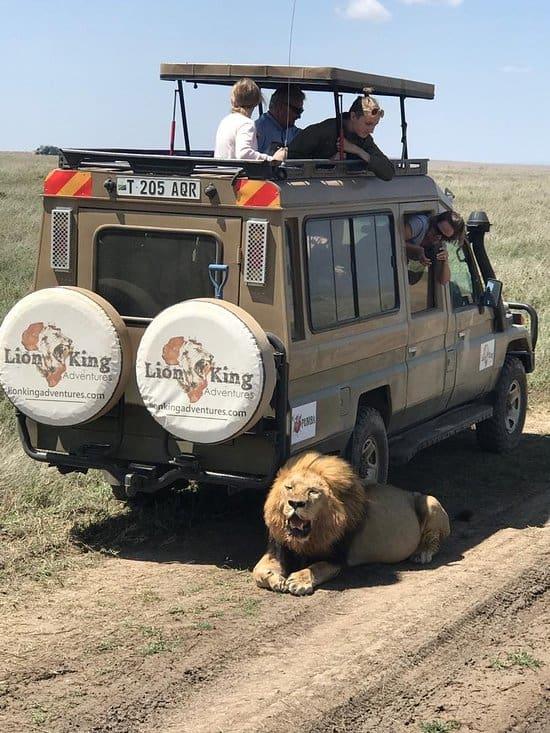 Serengeti (1)