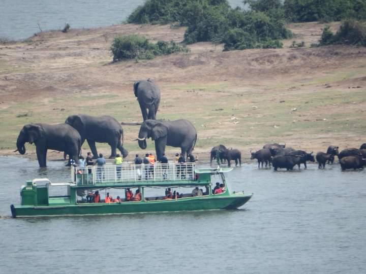 Boat Trip On The Kazinga Channel