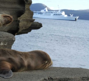 13 Days Land & Cruise Galapagos Exploration