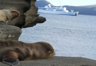 13 Days Land & Cruise Galapagos Exploration
