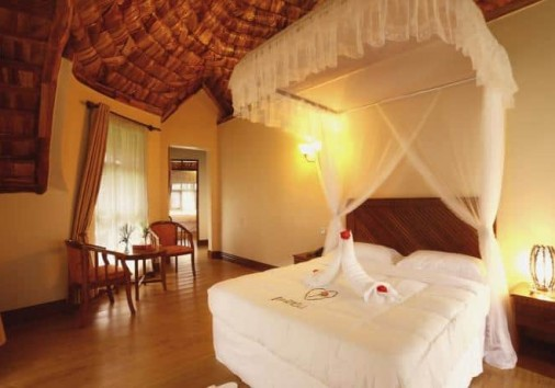 Farm Of Dream Lodge_expect_in_africa_safari