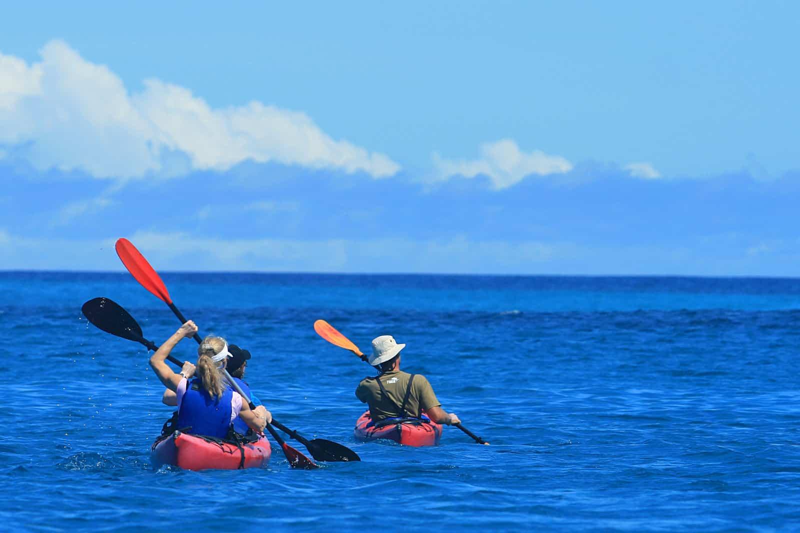 Kayaking in Isabela Island