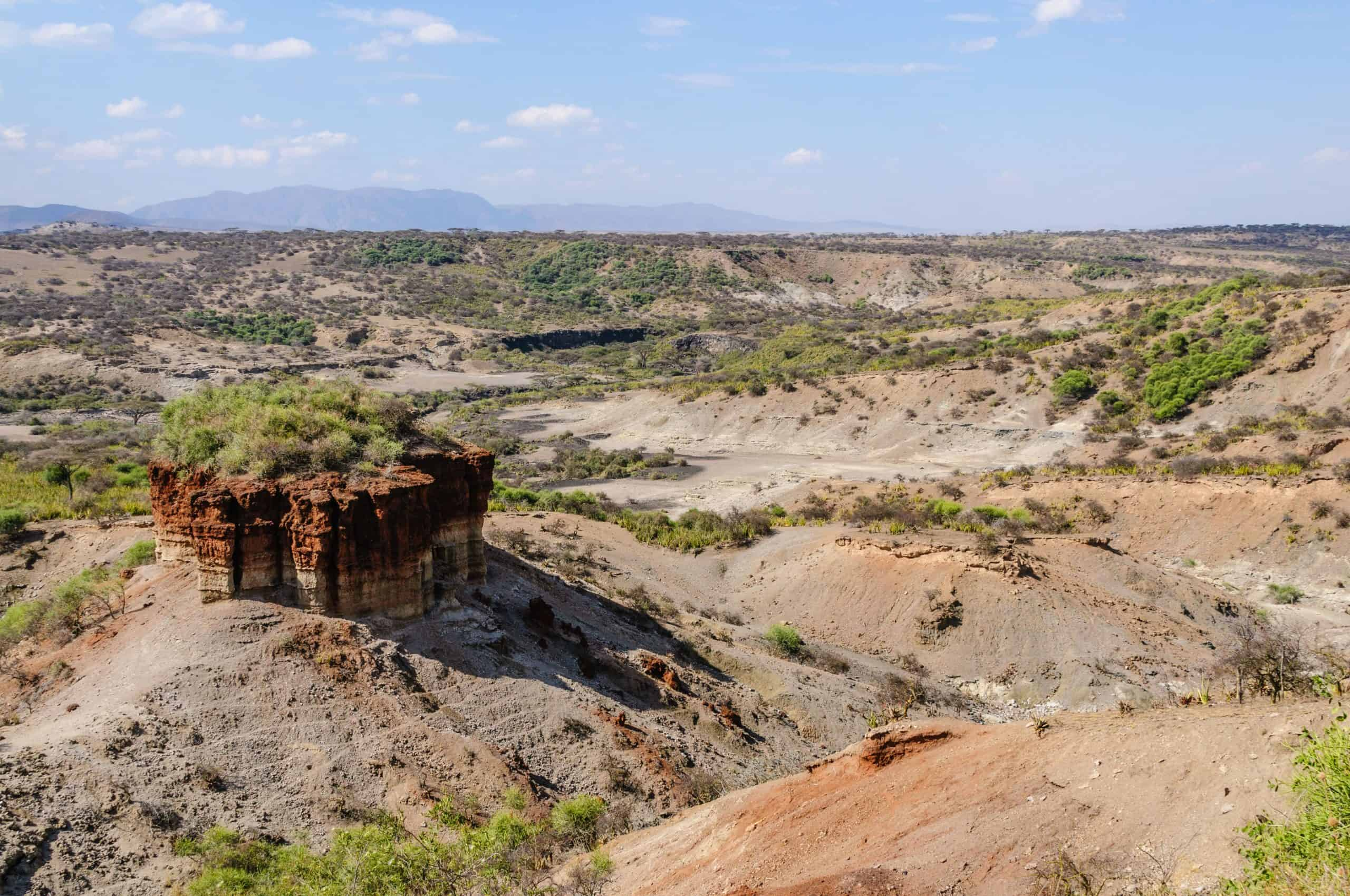 Olduvai Gorge, Where Many Early Human Fossils Were Found