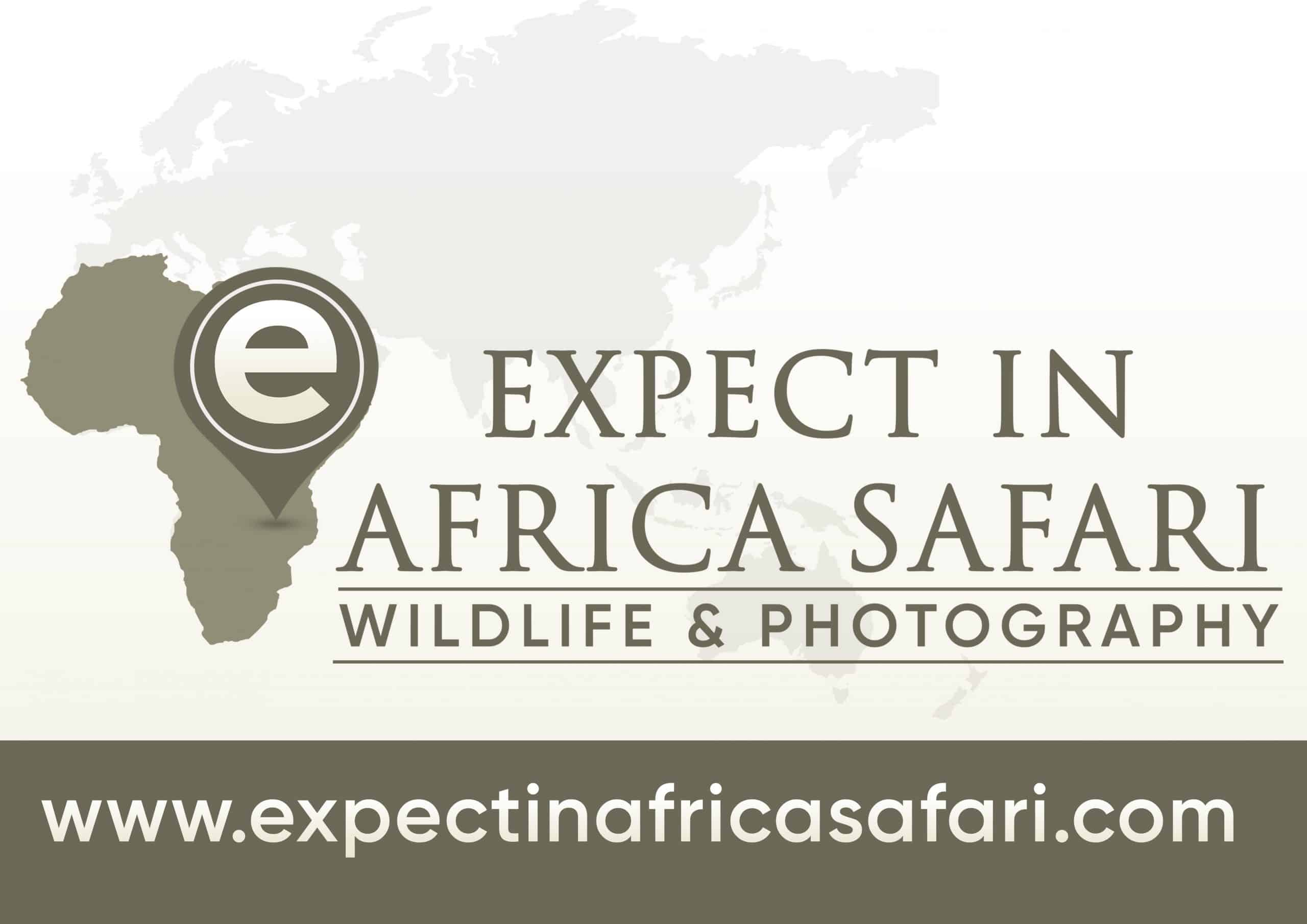 Expect In Africa Safari