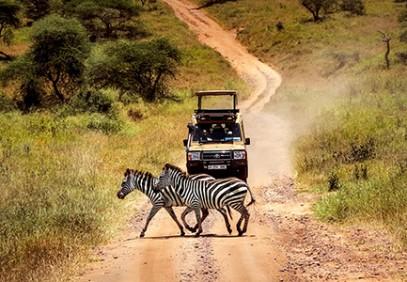 Tanzania Camping Safari Northern Circuit