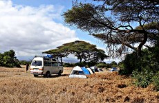Enduimet Cultural & Wildlife Experience