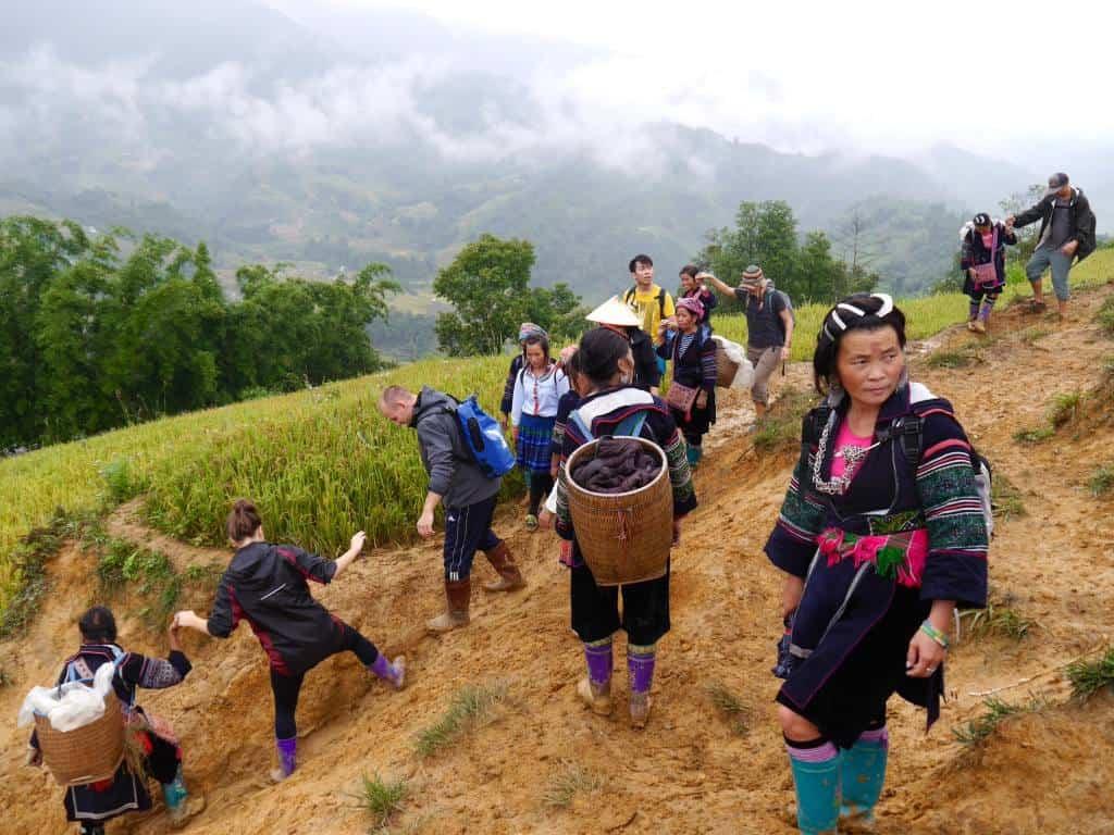 Sapa Valley Vietnam Trekking