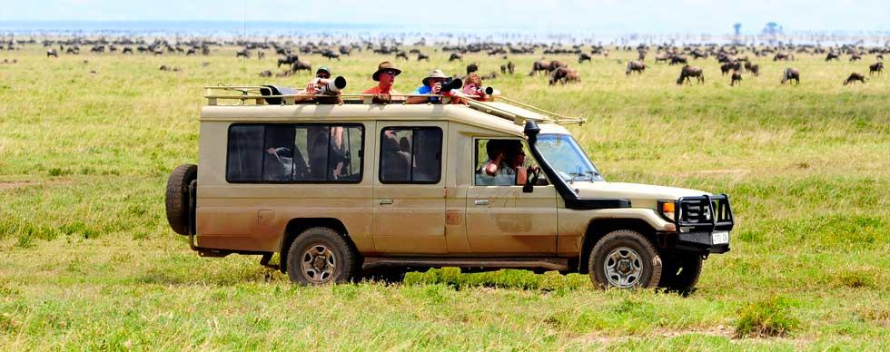 6 Day Luxury Safari To Tarangire Serengeti And Ngorongoro.