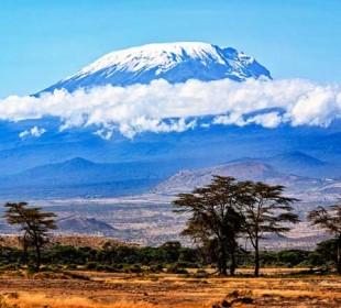 1-Day Mountain Kilimanjaro Day Hike