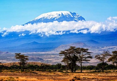 1-Day Mountain Kilimanjaro Day Hike