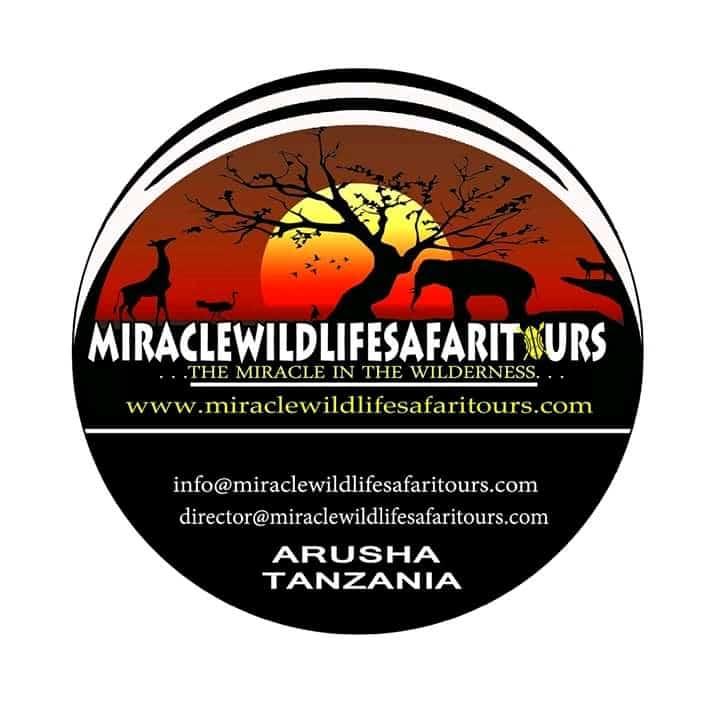 Miracle Wildlife Safari Tours
