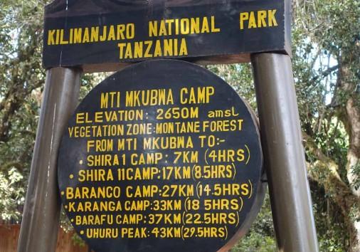 Mti Mkubwa Camp
