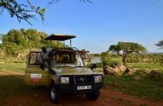 9-Day Experience Tanzania Safari & Unforgettable Culture