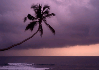 Sri Lanka Weather and Climate