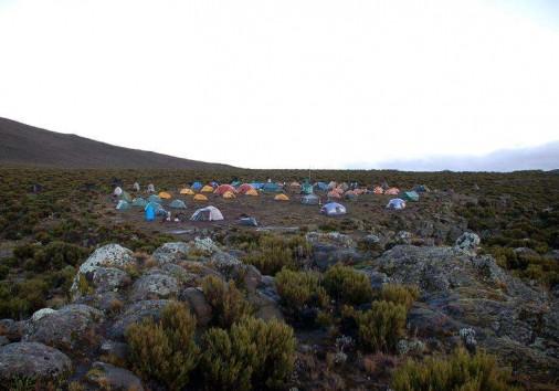 Shira Camp