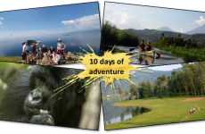 10-Day Trek, Kayak, Explore & See Gorillas in Rwanda