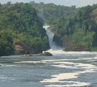 7-Day Big 5 Safari Uganda