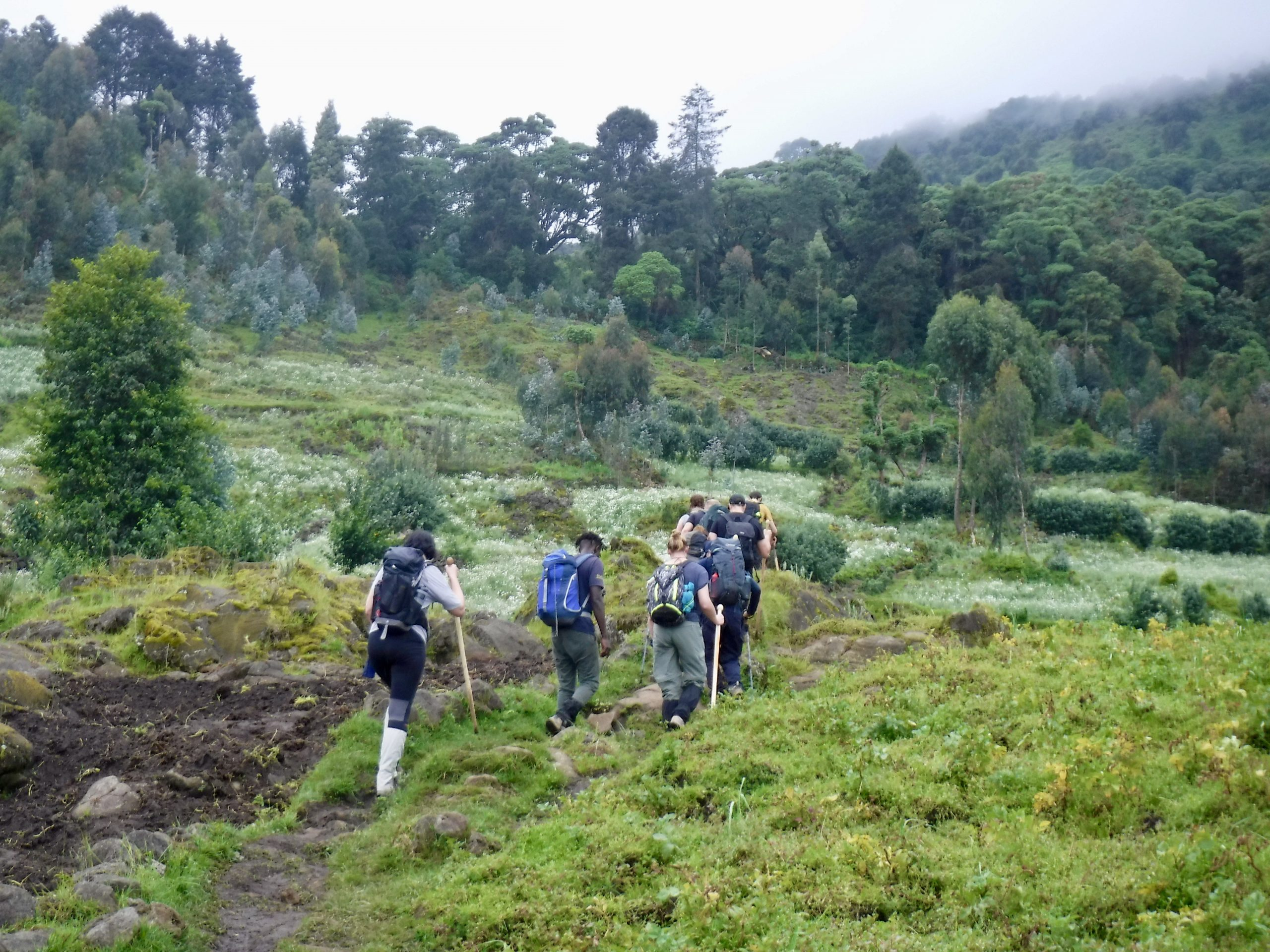 Kj 0012 Hill Walking.jpg