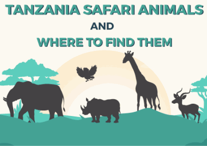 Tanzania Safari Animals and Where to Find Them [Infographic]