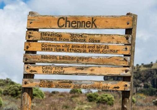 Chenek