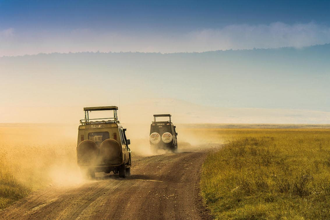 Jeeps In Ngoro