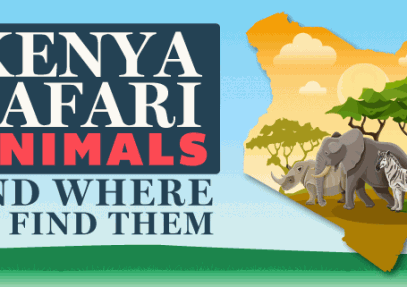 Kenya Safari Animals And Where To Find Them [Infographic]