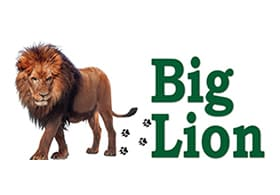Big Lion Safaris