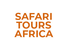 Safari Tours Africa