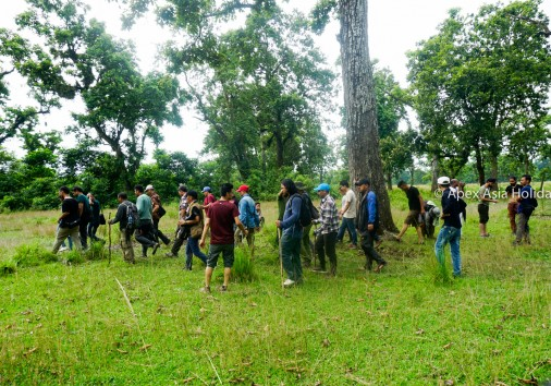 A Group Is Walking Around The Jungle In Chitwan National Park
