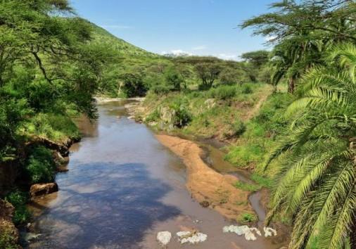 Central Serengeti National Park 007