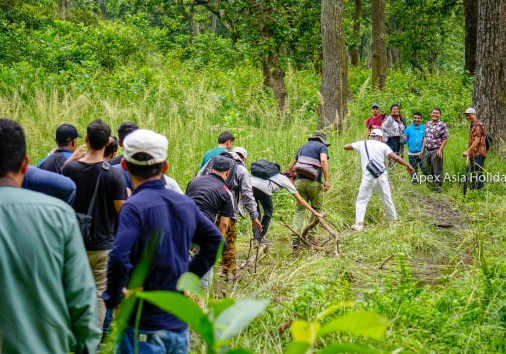 Inside The Chitwan National Park While Jungle Walking With Apex Asia Holidays