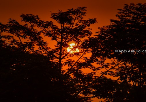 Sunset Over The Chitwan National Park