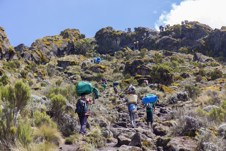 Track On Kilimanjaro On The Machame Route Whiskey
