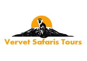 Vervet Safari and Tours