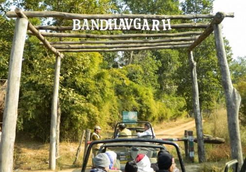 Bandhavgarh 2