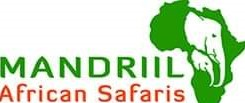 Mandrill African Safari