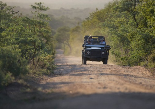 Game Drive Aroyo Luxury Safari