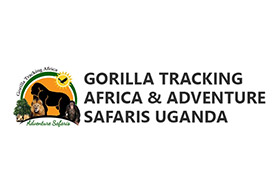Gorilla Tracking Africa & Adventure Safaris Uganda
