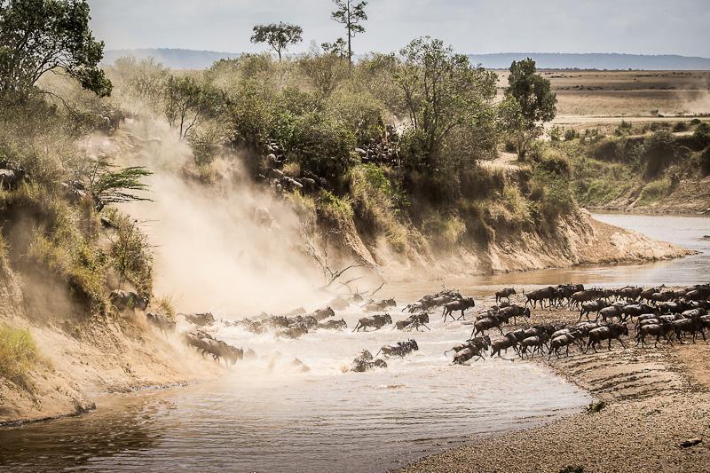 Serengeti 5 Of 6