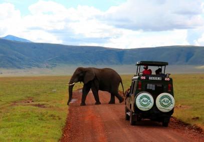 4-Day Ngorongoro, Tarangire and Manyara Safari