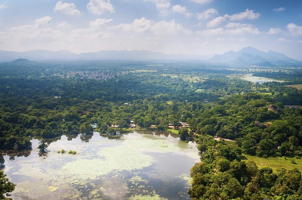 Valley In Central Part Of Sri Lanka Island, View From Sigiriya Lion Rock
