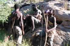 5-Day Adrenalin Tanzania Safari