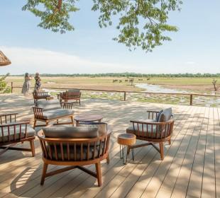 Zambia Thornicroft Safari