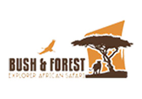 Bush and Forest Explorer African Safaris